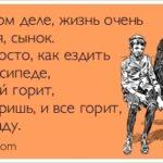 Импорт в Россию из Таиланда и Импорт в Таиланд из России.